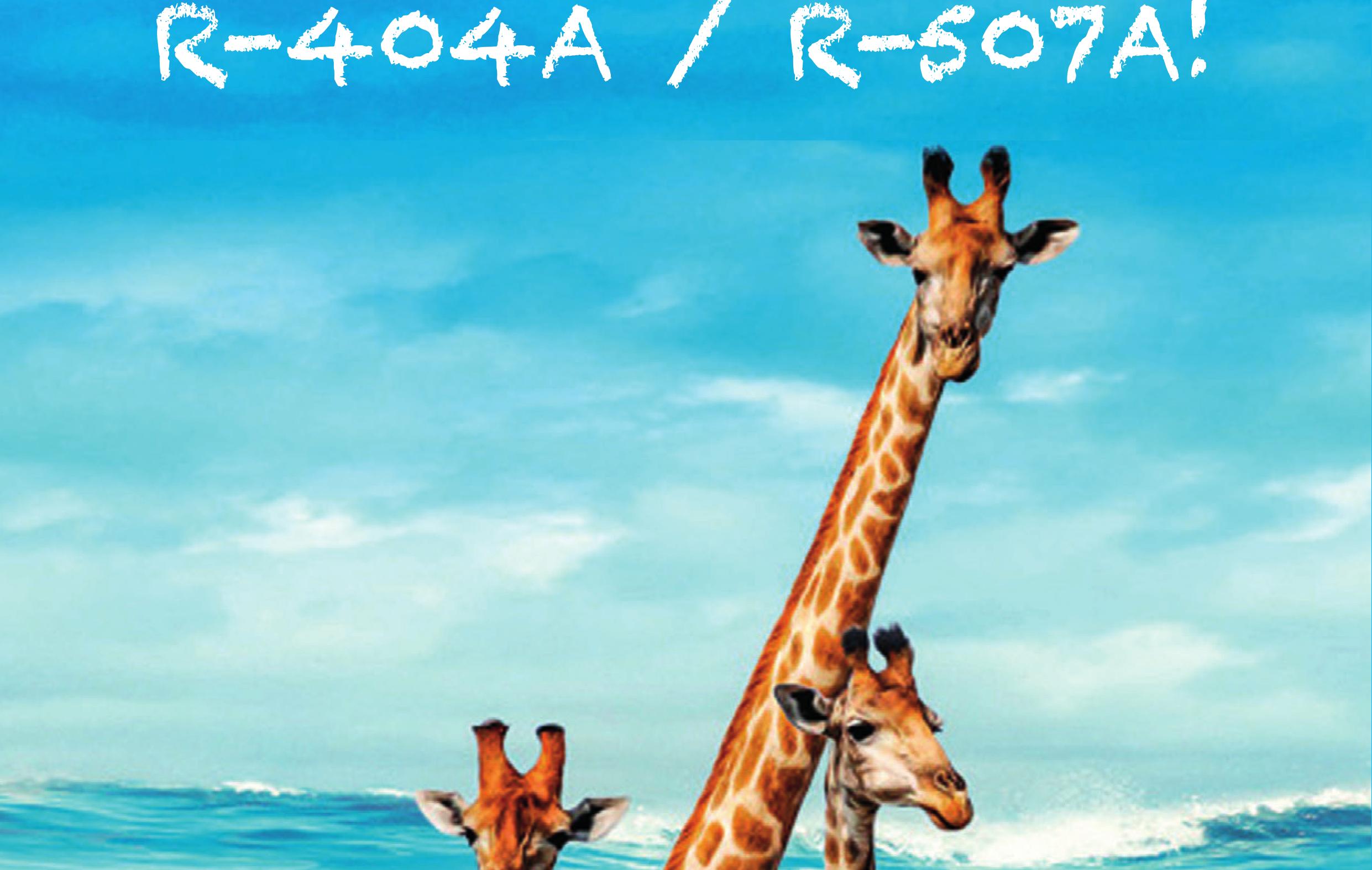 No R404A