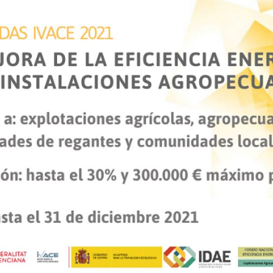 Ayudas a la mejora de la eficiencia energética en instalaciones agropecuarias en la Comunidad Valenciana. (IVACE)